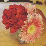 花の定期便「ブルーミーライフ」 を体験してみた!【口コミ・評判】