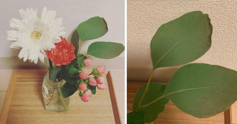 ブルーミーライフから届いた花が少し枯れている